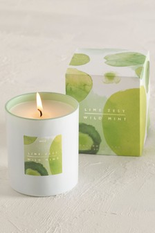 Lime Zest and Wild Mint Boxed Candle