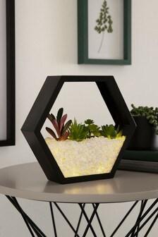 Terrarium Feature Light
