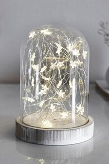 Cloche Star Feature Light