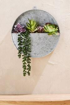 Artificial Succulents In Wall Pot