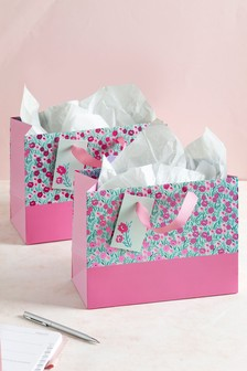 Set of 2 Small Gift Bags