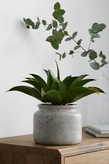 Artificial Aloe In Pot