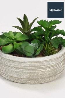 Bayswood Faux Succulent Cement Plant Pot