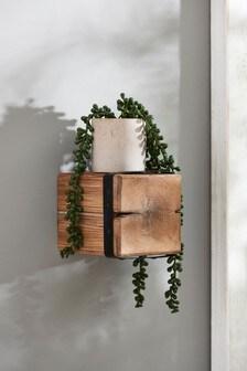 Small Bronx Shelf