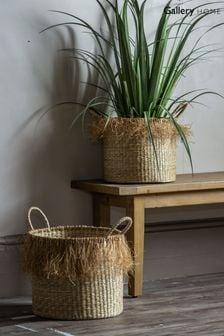 Set of 2 Gallery Direct Fringed Natural Baskets