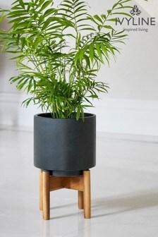 Ivyline Vigo Matt Anthracite Planter with Stand