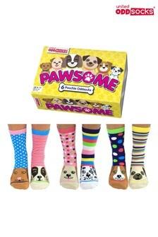 United Odd Socks Multicolored Pawsome Socks