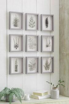Set of 9 Floating Botanical Framed Art