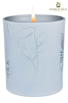 Noble Isle Pinewood Candle