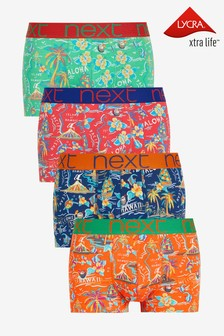 Bright Hawaii Pattern Hipsters 4 Pack