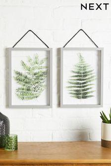 Green Set of 2 Floating Botanical Hanging Frames
