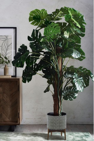 Extra Large Artificial Cheese Plant