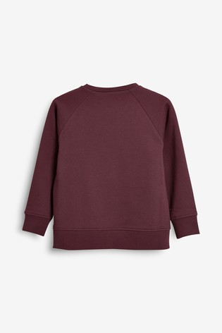 Berry Crew Neck Sweater (3-16yrs)