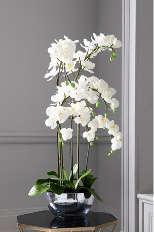 Artificial Luxe Orchid In Glass Bowl