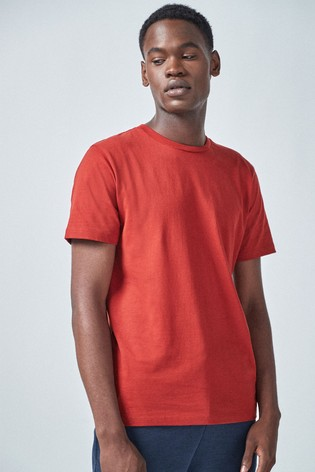 Terracotta Regular Fit Crew Neck T-Shirt