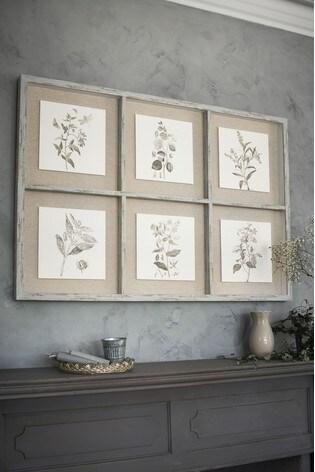 Botanical Montage In Wooden Frame