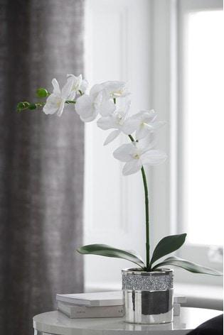 Artificial Orchid In Gem Pot