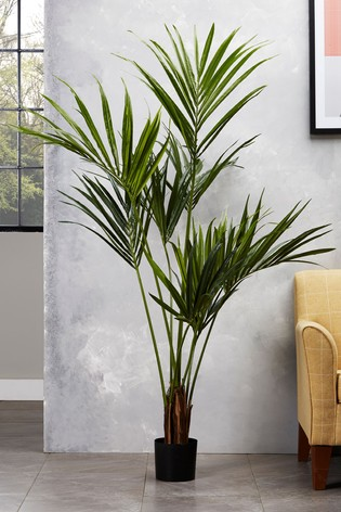 Artificial Kentia Palm