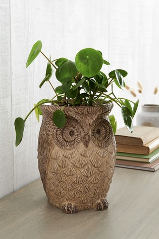 Owl Plant Pot