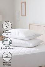 Set of 2 Sleep In Silk Pillows