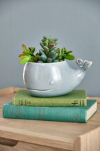 Artificial Succulents In Whale Pot
