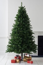 Luxe Douglas Fir Christmas Tree