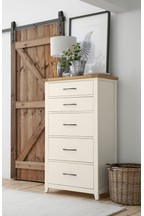 Thornley Painted Tall Chest