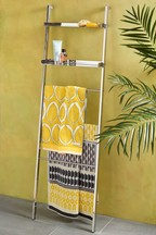 Chrome Ladder Towel Store