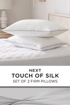 Set of 2 Sleep In Silk Pillows