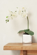 Real Touch Collection Luxe Small Orchid