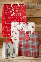 Set of 4 Red Christams Gift Bags