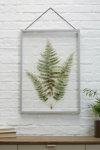 Large Botanical Floating Frame