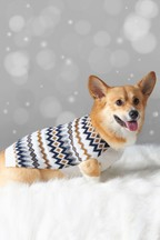 Fairisle Pattern Knitted Dog Jumper