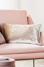 Plush Velvet Fringe Cushion