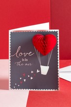 Love Is In The Air Valentine's Card