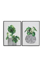 Set of 2 Artist Collection Botanical Framed Canvases by Summer Thornton