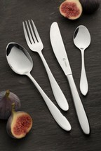 16 Piece Viners Eden Cutlery Set