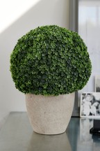 Artificial Topiary Ball In Pot