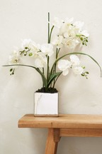 Artificial Collection Luxe Real Touch Orchid In Pot