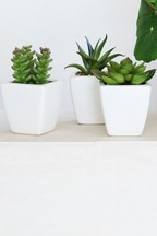 3 Pack Artificial Succulents In White Pots