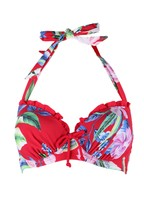 Pour Moi Miami Brights Lightly Padded Underwired Top E+