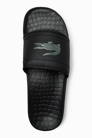 b547f460f Buy Lacoste® Fraisier from the Next UK online shop