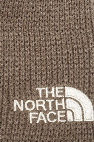 15a213f1f1e Buy The North Face® Brown Bones Beanie from the Next UK online shop