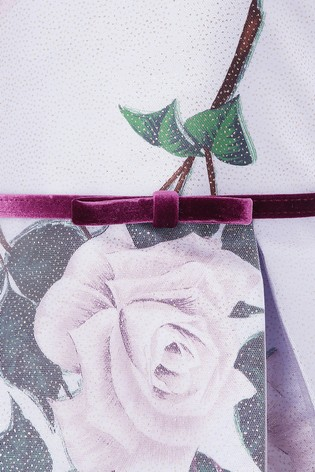 14317fbd Buy Monsoon Glitter Rose Dress from Next Germany