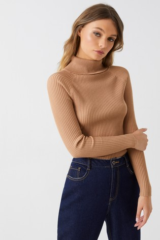 7ea26129808ac Buy Boohoo Rib Knit Roll Neck Jumper from Next Ireland