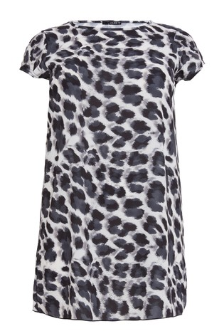 Buy Quiz Curve Animal Print Tunic Dress from Next Ireland 2562e6720