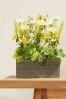 Yellow Floral Window Box