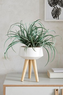 Artificial Aloe in Pot Stand