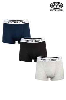Animal Assorted Safe Boxer Shorts Three Pack