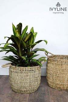 Set of 2 Ivyline Seagrass Lined Baskets